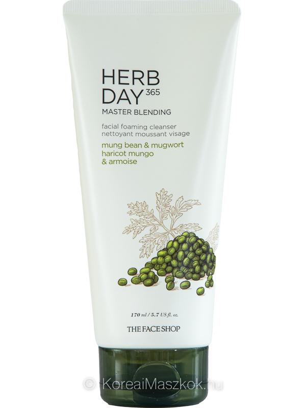 The Face Shop Herb Day 365 Master Blending Cleansing Foam Mung Bean&Mugwort arctisztító