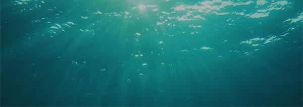 Tápanyagok a tengervízből