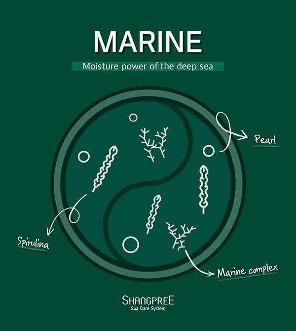 Shangpree Marine Energy szemmaszk összetevők